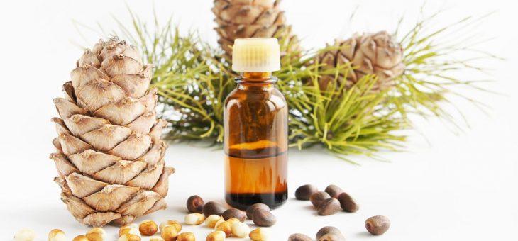 Кедровое масло: отзывы, полезные свойства и способы применения