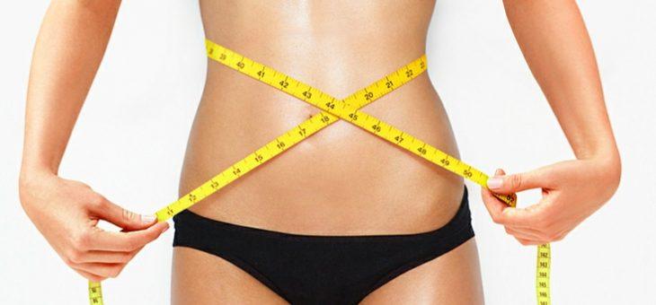 Цикорий для похудения: польза и вред, как готовить, отзывы